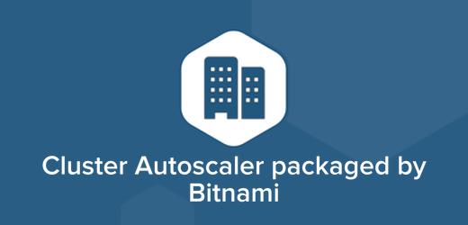 Cluster Autoscaler Cloud Hosting, Cluster Autoscaler Installer