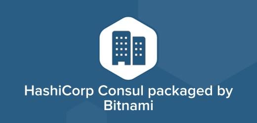 HashiCorp Consul Cloud Hosting, HashiCorp Consul Installer, Docker